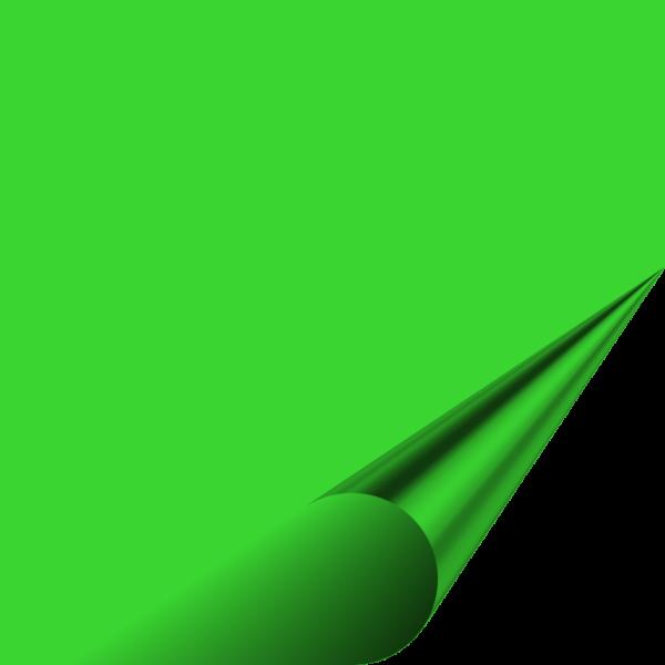 Flex 123 Premium - NEON GREEN 341 - 500mm x 100mm
