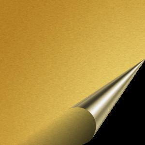 Flex 123 Premium - GOLD 320 - 500mm x 100mm
