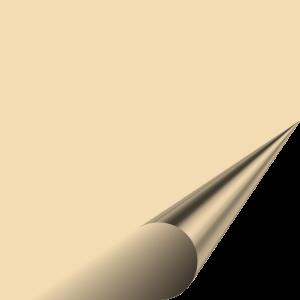 Flex 123 Premium - BEIGE 317 - 500mm x 100mm